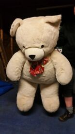 Large Teddy Bear from smoke and pet free home