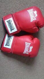 boxing gloves.newish