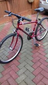bike RALEIGH RED ROCK Fully working gears and breaks