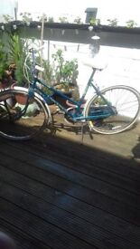 """ladys 26"""" bicycle in excellent condition"""