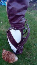 Full set of Tour Model Golf Clubs, great starter set