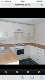 Walk to town & train station in Aberdare. Lovely 2 bed house