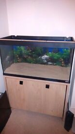 200ltr fish tank, with stand, 300ltr external filter