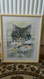 Cat with Daisies Picture In Frame