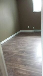 2 Bedroom Apartment St. John's Newfoundland image 6