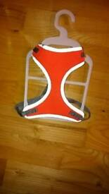 Reflective harness for a small dog