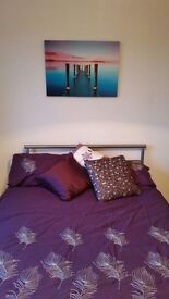 Lovely Double Room in Redditch