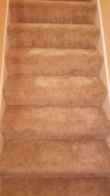 Grand slam carpet