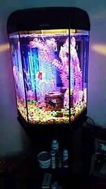 Aquael 60lt Fish tank and matching stand