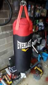 Everlast punchbag and gloves