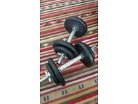 2x10kg cast iron dumbbells