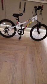 """Apollo wham 6 speed 20"""" bicycle"""
