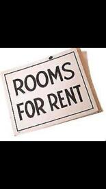 6 rooms available around west reading