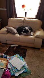 2 x sofas for free