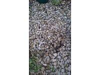 FREE gravel for gardens