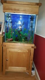 155 ltr aqua oak tropical fish tank