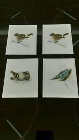 1960s Bird Print Cards. £5.00