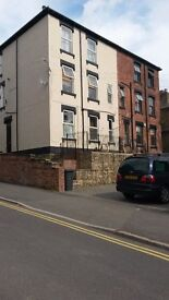 SPACIOUS FULLY FURNISHED BEDSIT NEAR HALLAMSHIRE HOSPITAL, UNIVERSITY AND TOWN CENTRE. C
