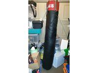 AES KICK/PUNCH BAG