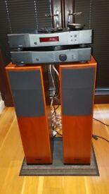 Rega Audio System