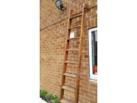 10 ft ladders