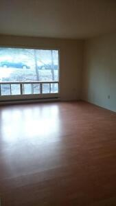 LARGE 2 BEDROOM / 2 LEVEL– WITH TONS OF STORAGE!! - March 1st!