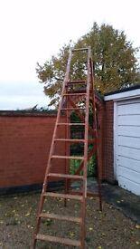 Huge Hardwood Ladder. 11ft Tall