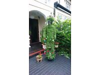 Grass man with garden dog pots & plants for sale