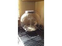 15l bio orb fish bowl unused
