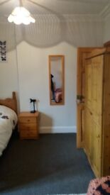 Bed/Sitting room to let