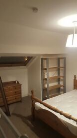Large attic room in 3 story house to rent next to endcliffe park