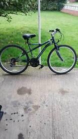 Great lady's adult bike