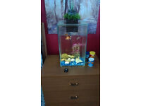 Fishtank FLUVALE with accessories