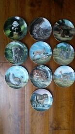 Series of 10 fine china plates The Last of Their kind: The Endangered Species