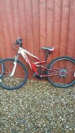 Bike youths