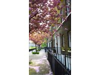 CANADA WATER BEAUTIFUL 2 BED FLAT WITH GARDEN