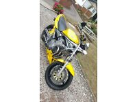Suzuki bandit 600 2004, 13000 miles, lots of extras very clean,stainless pipes, race can +original