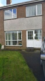 3 bedroom semi to let in Newtownards. Abbeydale area. Gas heating