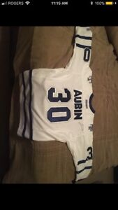 Toronto maple leafs signed jersey