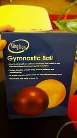 Birthing ball / gymnastic ball