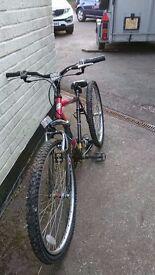 Diablo pro bike for sale