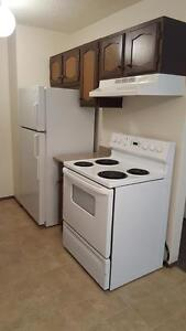 Beautiful, Pet Friendly 2BR Available in Fairhaven!