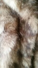 real fur bear coat
