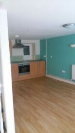 1 bedroom house for rent near town centre