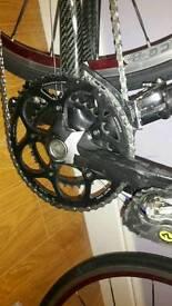 Willier thor full carbon road bike