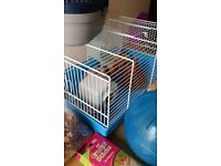 HAMSTER CAGE + ACCESSORIES & CARRY CAGE