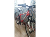 Mountain bike excellent condition