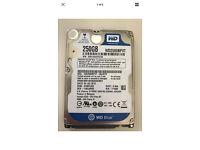 Western Digital 250GB Sata 2.5 Hard Disc Drive with Enclosure