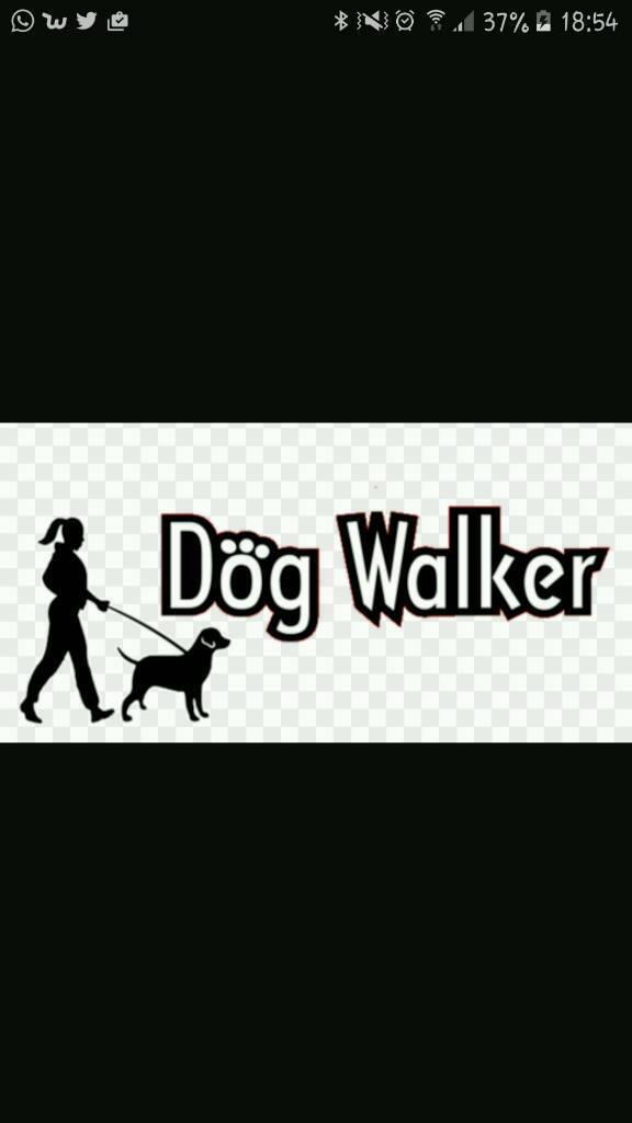 dog walker. group walks or 1-2-1. 1st group walk £5
