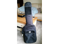 Padded guitar carry case